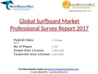 Global Surfboard Market Professional Survey Report 2017.pptx