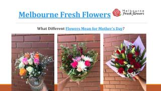 What Different Flowers Mean for Mother's Day – Melbourne Fresh Flowers.pdf