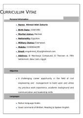 test CV .doc